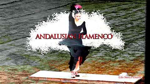 Andalusian Flamenco